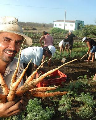 brazil farm.jpg