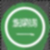 saudi arabia pin_edited.png