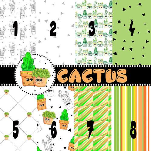 Set Carte Cactus