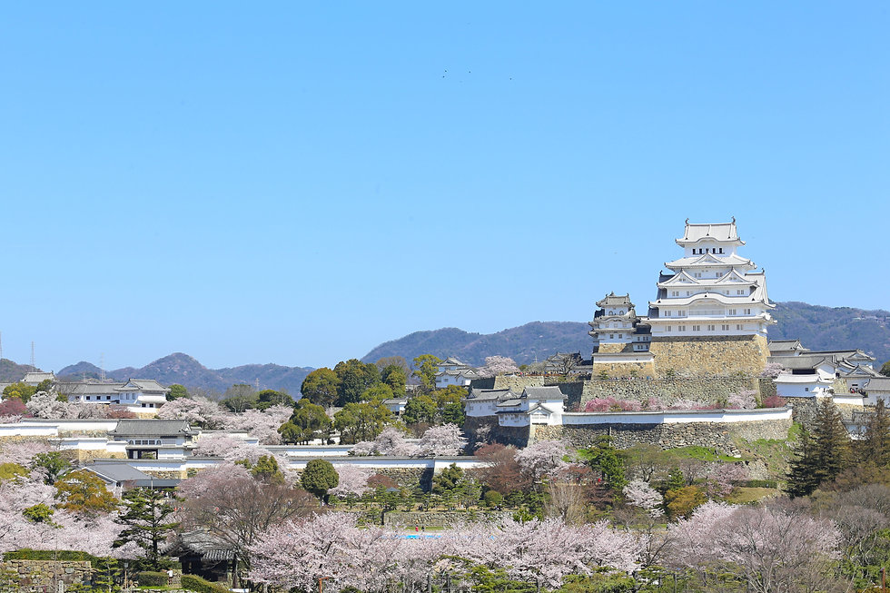 himeji-castle_new_01_001.jpg