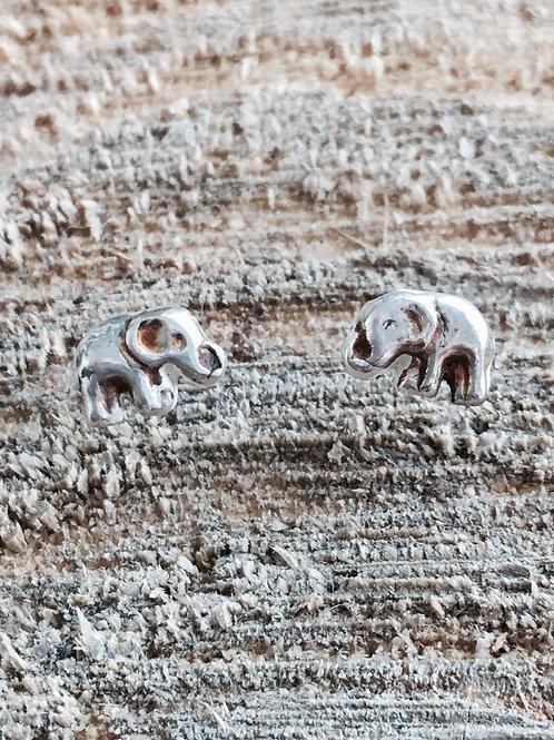 Elephant silver studs