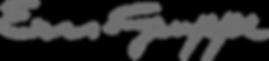 Ern-Gruppe-Logo.png