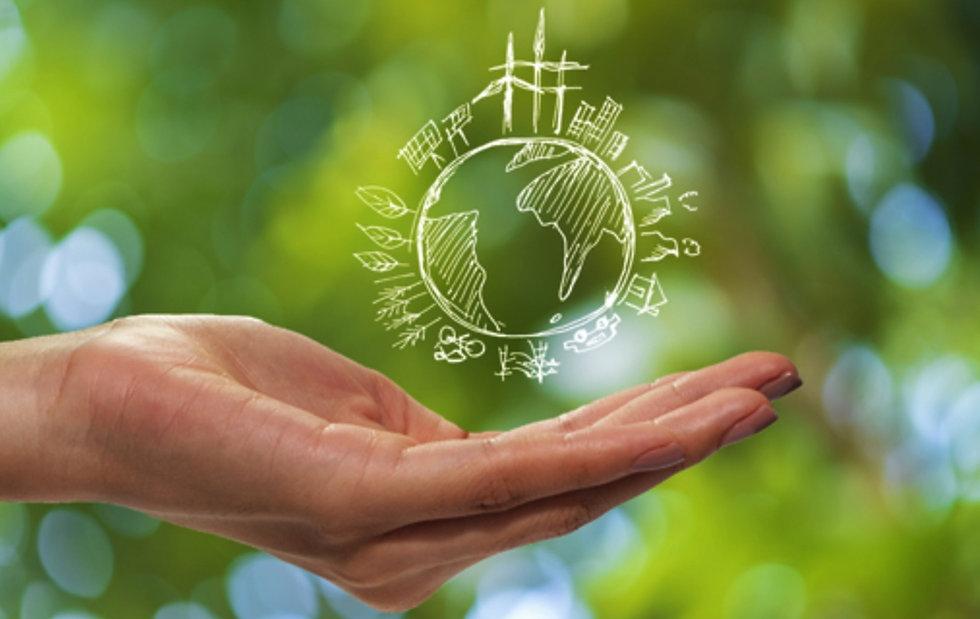 Sustainability-green.jpg