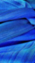 Oregon Weaver scarf