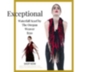 exceptionalplus (2).jpg