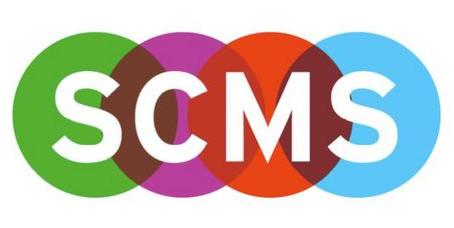 "CFP: ""Digital Voyeurism"" SCMS 2015 Panel"
