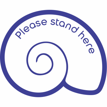 Please Stand Here - Shell (5 per pack)