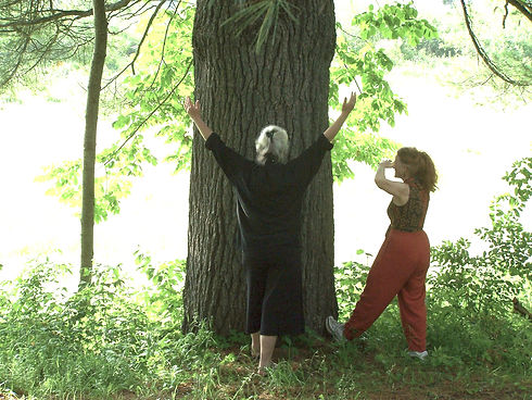 tarin chaplin and Janet MacLeod - Qi Gon