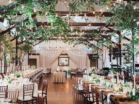Best Virginia Winery Wedding Venues