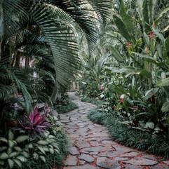 YogaBarn-garden-entrance-path.jpg