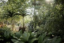 YogaBarn-Garden-Statue.jpg