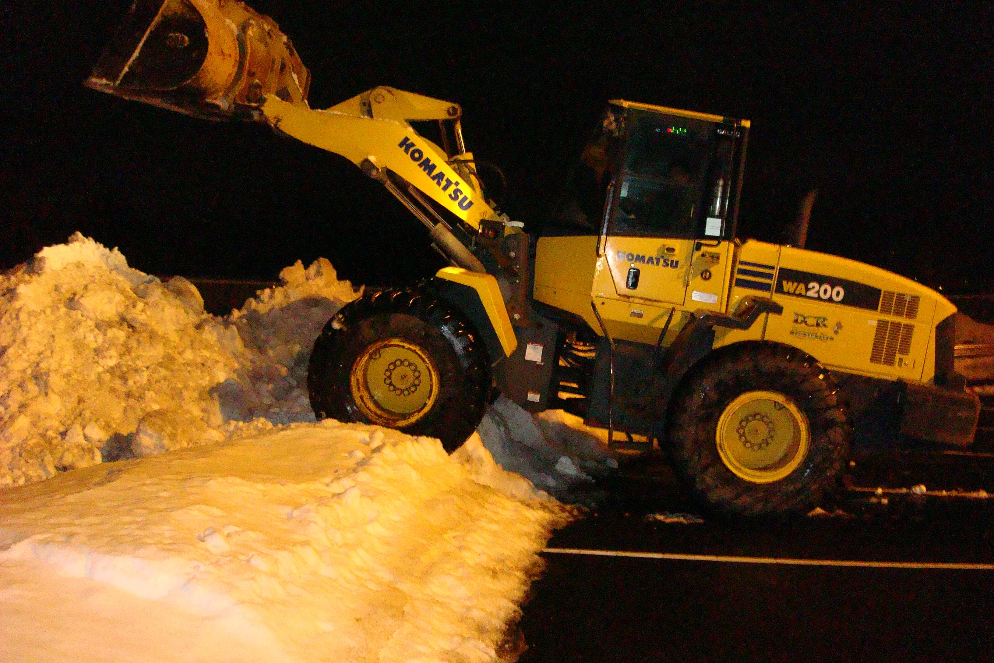 2011 Snow 010