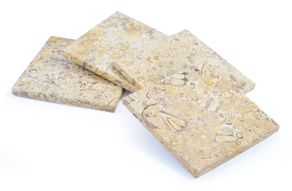 Square Fossilstone Coasters