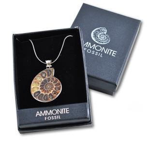 Fossil Ammonite Pendant