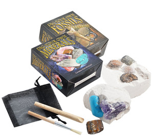 Set of 2 Dig Your Own Fossil & Mineral Kits - Small