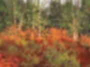 1059r-Autumn-Sumac-Gallery-XII.jpg