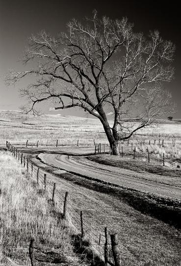 Flint Hills Z Road Ranch