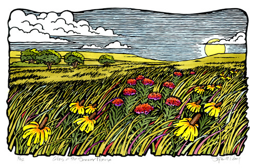 Colors of the Summer Prairie