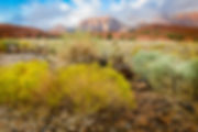 IP-Clearing-Skies-Over-Snow-Canyon_31x41