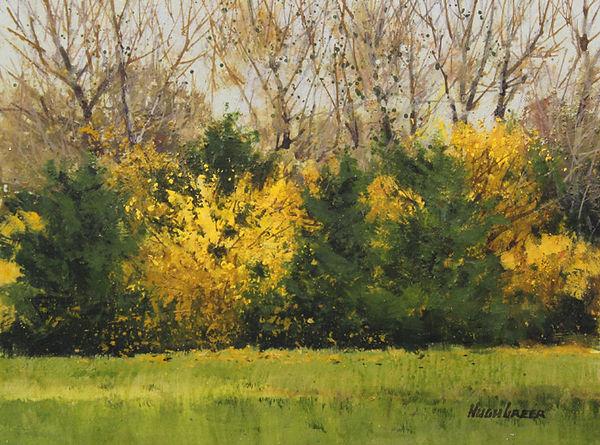1142-Backyard-Autumn-Gallery-XII.jpg