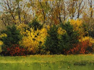 Hugh Greer - Backyard Autumn