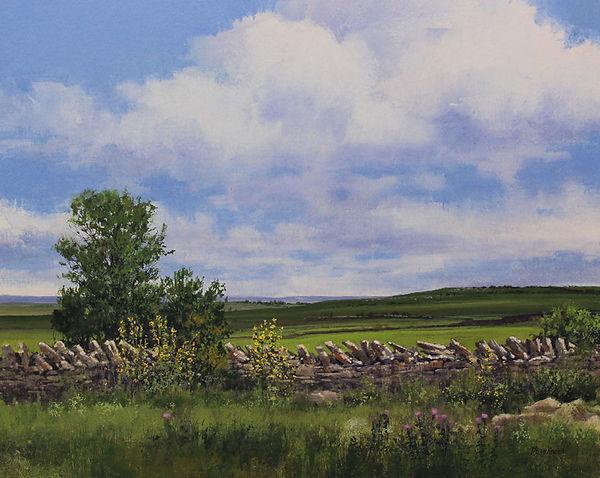 1001-Prairie-Border-new-Gallery-XII.jpg