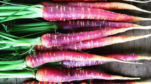 Carrots: Will Purple Reign Again?