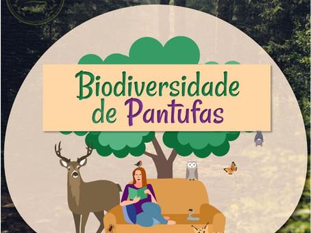 Terminou a 1ª Edição do projeto Biodiversidade em Pantufas