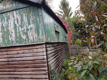 Old Shed  (3)
