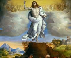 Father David's Reflection for the Seventh Sunday of Easter