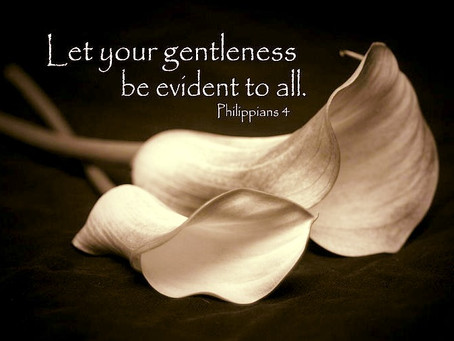 Abandonment Leads to Gentleness