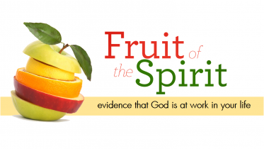 """""""By Their Fruits You Will Know…"""""""