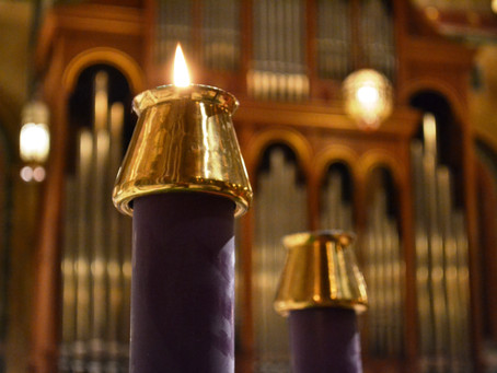Father David's Reflection for the First Sunday of Advent