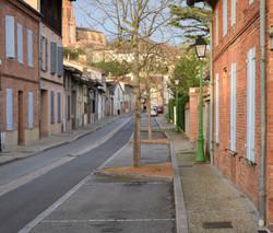Rue DSC_0130