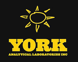 York Labs_sunonblack copy.jpg