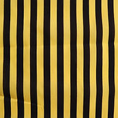 Stripe Yellow and Black.JPG