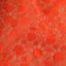 Flower Lace Orange.JPG