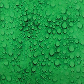 26693 Green Raindrops.JPG