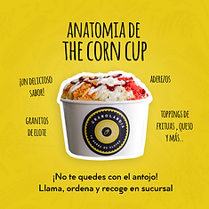 AnatomiaCornCUP.png