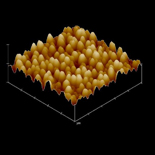 ZnO Nanorod Array (AFM)
