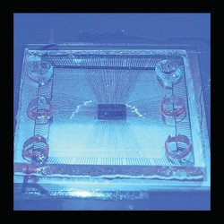 Photonic Lab-on-a-Chip