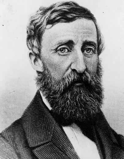 Thoreau Naturalist