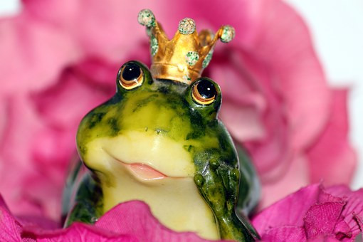 a magical frog wearing a crown