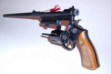 tranquiliser gun.jpg