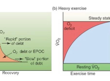 EPOC: Excess Post-Exercise Oxygen Consumption