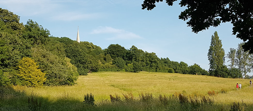 Summer days on Churchfields, the perfect