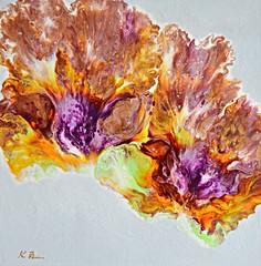 'Bloom I' 24x24.jpg