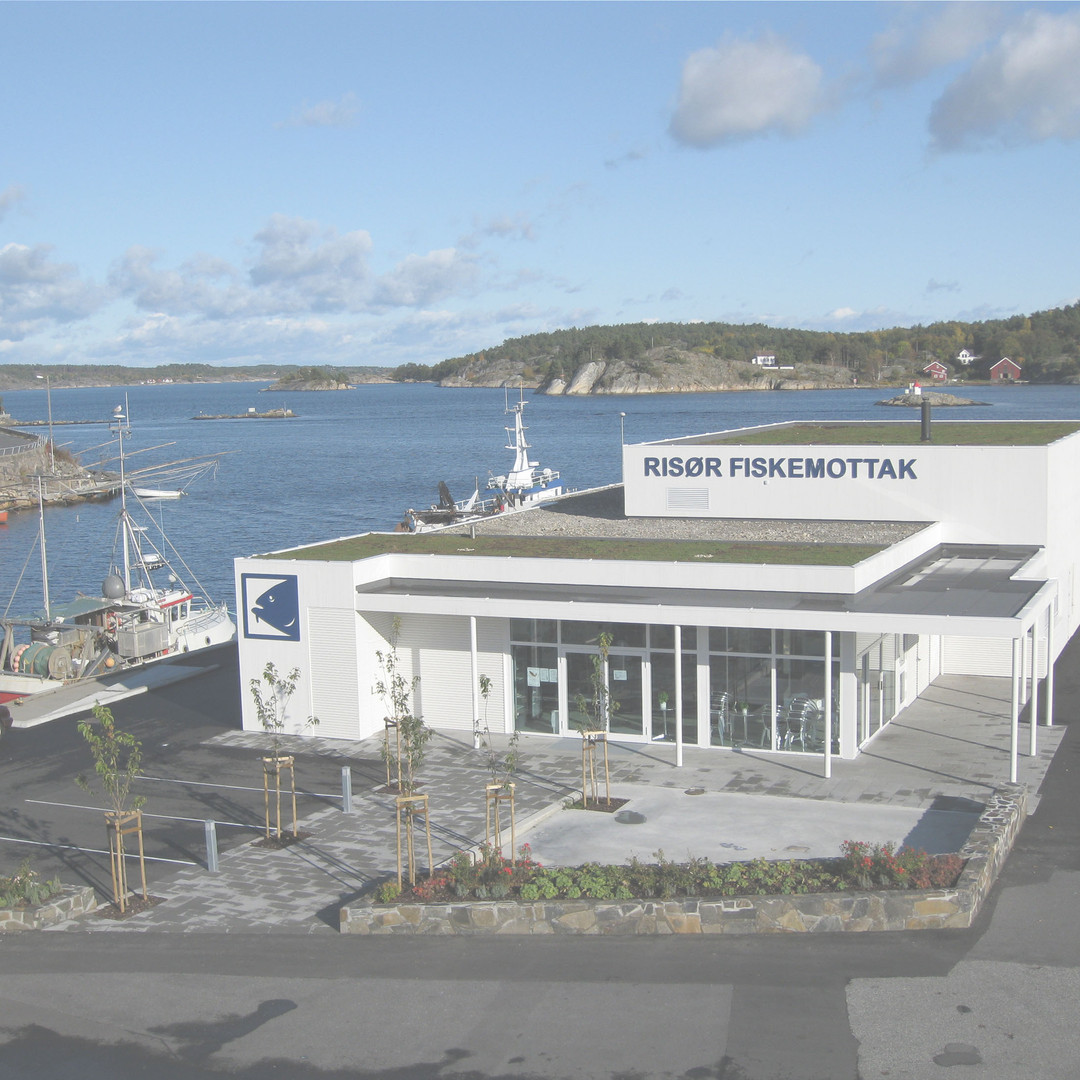 FISKEMOTTAKET, RISØR