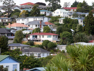 Future of New Zealand Property