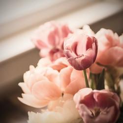 Flowers are girls best friend